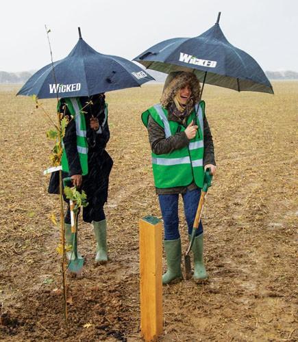 Woodland Trust - Image Credit Judith Parry
