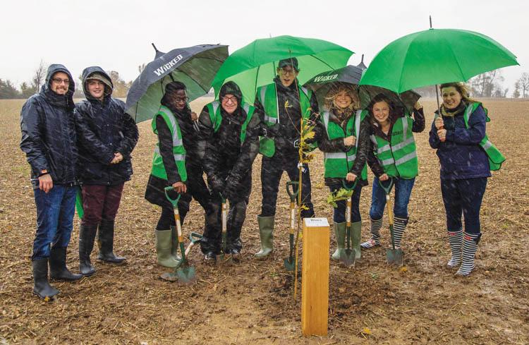 Woodland Trust- Image Credit Judith Parry