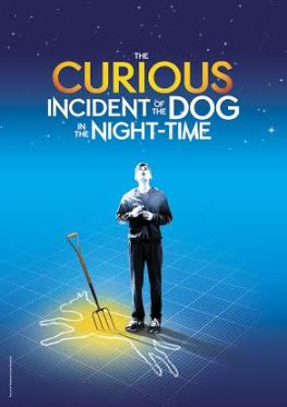 Curious Incident Poster