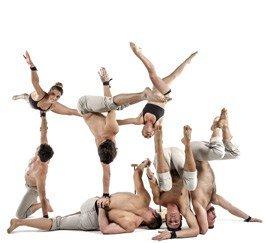 Udderbelly Circus