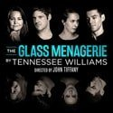 Review of The Glass Menagerie at the Duke of York's Theatre
