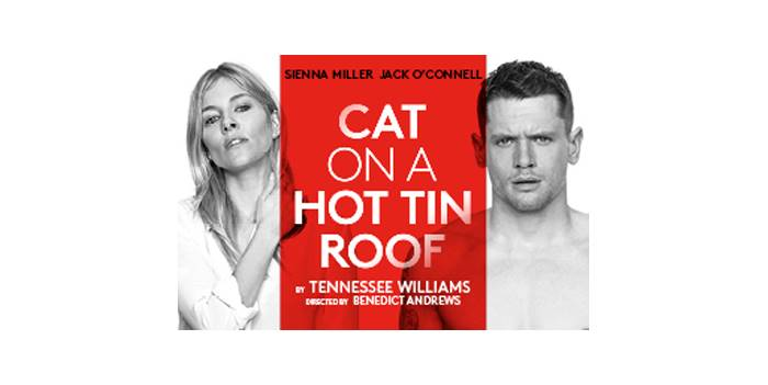 an analysis of the character brick in cat on a hot tin roof a play by tennessee willaims Tennessee williams' play 'cat on a hot tin roof' is now recognized as a great work of american drama but williams was forced to change the ending for his contemporaries.