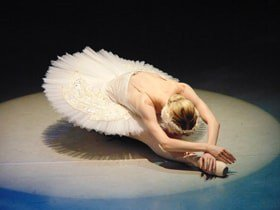 Swan Lake - Vienna Festival Ballet