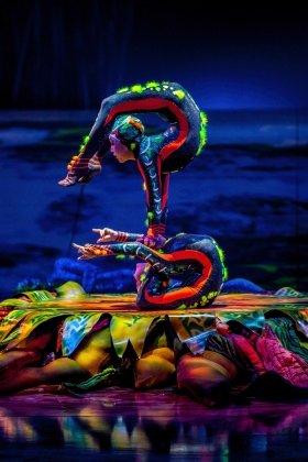Cirque Du Soleil Totem at The Royal Albert Hall