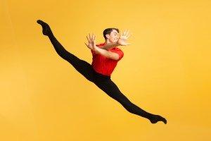 National Youth- Ballet 2019 Season - Wonderlands