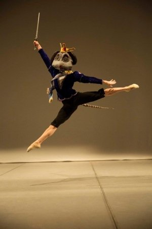 The Vienna Festival Ballet Company