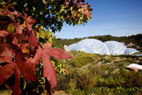 Adult Entrance for Two to The Eden Project