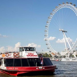 Family Thames Sightseeing Cruise with 24 Hour Rover Pass