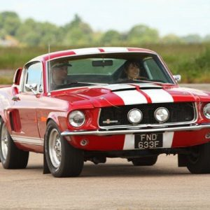 Mustang Thrill