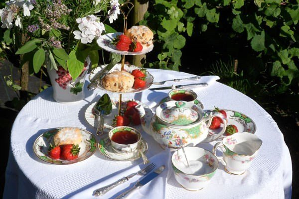 Sedlescombe Organic Afternoon Tea Vineyard Tour and Tasting for Two in East Sussex