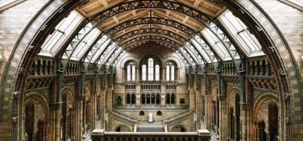 Guided Tour of The Natural History Museum