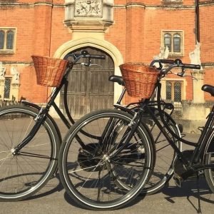 Hampton Court Bike Tour for Two