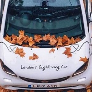 London Tour For 3 with Chauffeur Guide