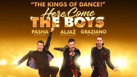 Here Come The Boys at New Victoria Theatre