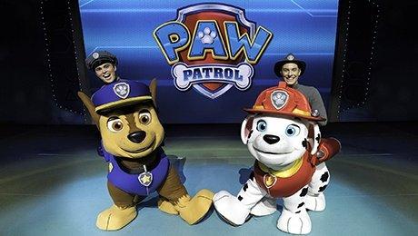"PAW Patrol Live! ""Race to the Rescue"" at Edinburgh Playhouse"