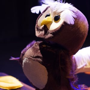 Baby Bear - 18 months - 3 years at Studio at New Wimbledon Theatre