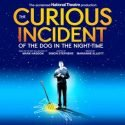 The Curious Incident Of The Dog In The Night-Time Troubadour Wembley Park Theatre, London